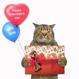 Cat holds a red gift box and balloons
