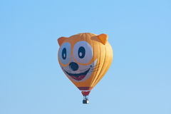 Cat hot air balloon Stock Image