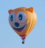 Cat hot air balloon Royalty Free Stock Photos