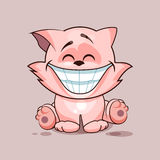 Cat with huge smile Stock Images