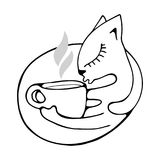 The cat hugs a cup of fragrant coffee, tea or cocoa. Stock Images