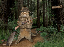 Cat hunter with rat in forest Royalty Free Stock Photo