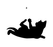Cat hunts the fly, black silhouette Royalty Free Stock Image