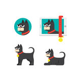 Cat icon in different situations Royalty Free Stock Photography