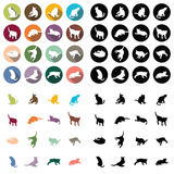 Cat icon on white background. Circle cat icon on white background Royalty Free Illustration