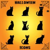 Cat Icons Immagini Stock