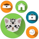 Cat icons. Cat food signs. Home pets signs. Home pets signs. Veterinary pets signs. Circles flat buttons with shadow. Stock Photos