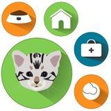 Cat Icons Segni del cibo per gatti La casa pets i segni La casa pets i segni Segni veterinari degli animali domestici Bottoni pia Fotografie Stock