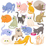Cat icons set, cartoon style Stock Photography