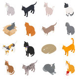Cat icons set, isometric 3d style Stock Photography