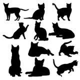 Cat Illustration Stockbild