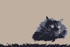 CAT ILLUSTRATION. Colour black on a light. Background. FOR USE design, decoration, printing, smart phone, website, etc Royalty Free Stock Images