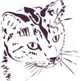 Cat Illustration curiosa Immagine Stock