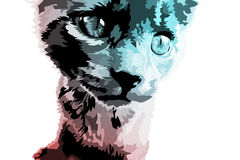 Cat Illustration. Designed with street art in mind Royalty Free Stock Images