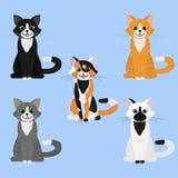 Cat illustration vector illustration