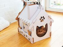 Free Cat In The Cat House. Shallow Dof Royalty Free Stock Photo - 188321785