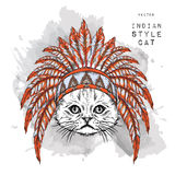 Cat in the Indian roach. Indian feather headdress of eagle. Hand draw vector illustration Stock Images