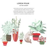House plants color and cat hand drawn illustration vector illustration