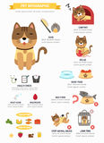 Cat infographic vector Royalty Free Stock Image