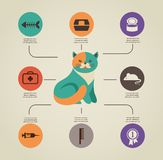 Cat infographics with vector icons set Royalty Free Stock Images