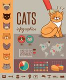 Cat infographics with vector icons set Royalty Free Stock Image