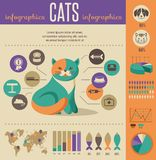 Cat infographics with vector icons set Stock Image