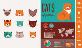 Cat infographics with vector icons set Stock Photos