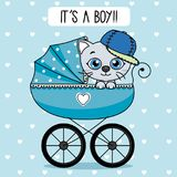 cat inside baby stroller Stock Photography