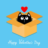 Cat inside opened cardboard package box. Kitten looking up to red heart. Happy Valentines day Flat design style. Kawaii animal. Lo vector illustration