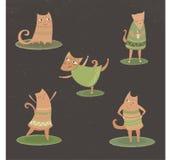 Cat& x27; intressant liv för s Arkivfoton