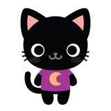 Cat Isolated On White Background negra feliz linda Fotografía de archivo libre de regalías