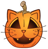 Cat Jack O' lantern Royalty Free Stock Images