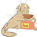 Cat and jam Royalty Free Stock Photos