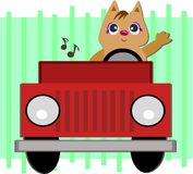 Cat in a Jeep Royalty Free Stock Photos