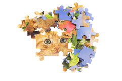 Cat jigsaw puzzle pieces. Isolated over white Royalty Free Stock Images