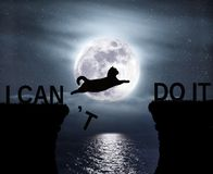 Cat jumping over the abyss. The brave cat jumping over the abyss. I can do it. Positive attitude and motivation stock images