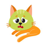 Cat, kitten feeling sick to stomach, green from nausea, lying Stock Images