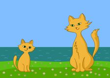 Cat and kitten on sea coast Stock Photography