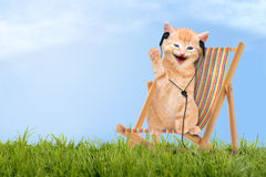 Cat / kitten sitting in deck chair with headphones Stock Photos