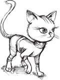 Cat Kitten Sketch Doodle Stockfoto