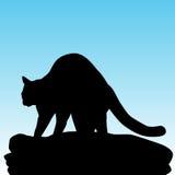 Cat Kneading Blanket Imágenes de archivo libres de regalías