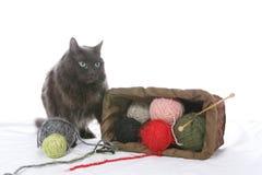 Cat knocked over knitting stock photos