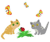 2 cat, ladybug and butterflys.Vector illustration Royalty Free Stock Images