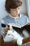 Cat lay in pet bed with boy reading book Royalty Free Stock Images