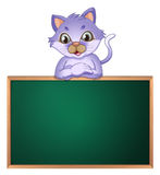 A cat leaning above the empty blackboard Royalty Free Stock Photos
