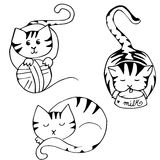 Cat leisure. Collection of three images picturing cats favourite leisure activities : playing, eating, sleeping royalty free illustration