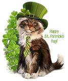 Cat-Leprechaun watercolor painting Royalty Free Stock Photo
