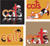 Cat letters Stock Image