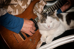 Cat lies on the lap of a man. Playing the guitar Stock Photography