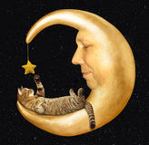 The cat lies on the moon Royalty Free Stock Photos